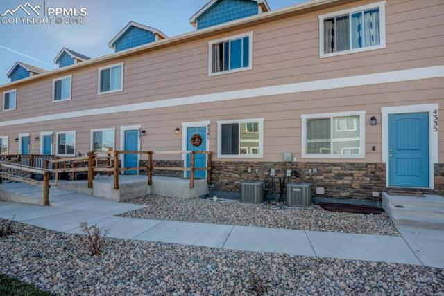 4341 River Line Grove, Colorado Springs, CO 80911 (#2670308) :: Venterra Real Estate LLC
