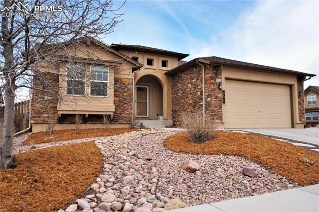 6560 Sawbuck Road, Colorado Springs, CO 80923 (#2670737) :: Venterra Real Estate LLC