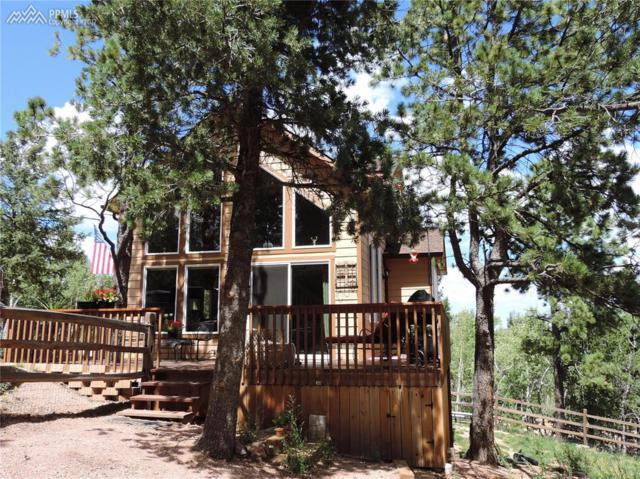 42 Potlatch Trail, Woodland Park, CO 80863 (#2676325) :: The Treasure Davis Team