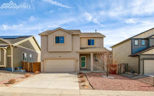 2414 Reed Grass Way, Colorado Springs, CO 80915 (#2680640) :: 8z Real Estate