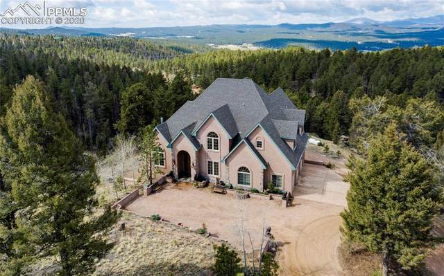 4565 W Highway 24, Florissant, CO 80816 (#2680759) :: 8z Real Estate