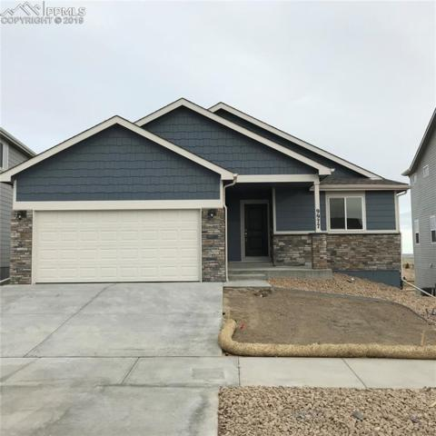 9977 Morning Vista Drive, Peyton, CO 80831 (#2681566) :: The Dunfee Group - powered by eXp Realty