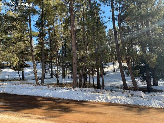 158 Paint Pony Lane, Florissant, CO 80816 (#2681675) :: Finch & Gable Real Estate Co.