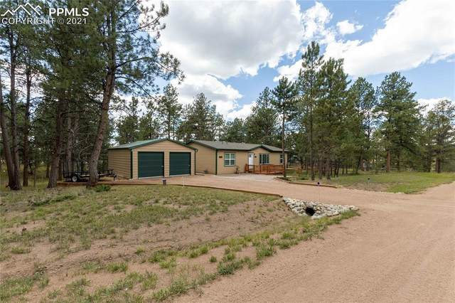184 Homestead Lane, Florissant, CO 80816 (#2685124) :: Tommy Daly Home Team