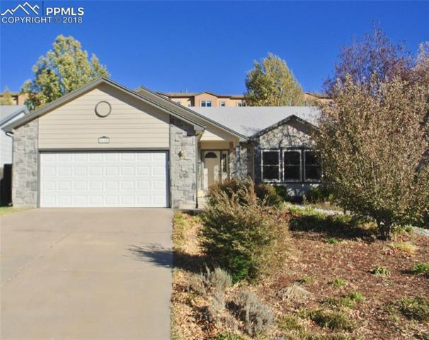 4655 Dapple Grey Lane, Colorado Springs, CO 80922 (#2691877) :: Fisk Team, RE/MAX Properties, Inc.
