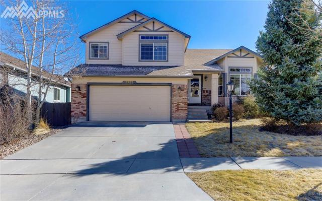 3331 Sand Flower Drive, Colorado Springs, CO 80920 (#2692558) :: Jason Daniels & Associates at RE/MAX Millennium