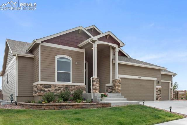 8205 Misty Moon Drive, Colorado Springs, CO 80924 (#2692990) :: CC Signature Group