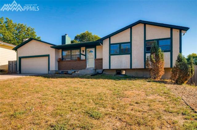 2837 Buttermilk Circle, Colorado Springs, CO 80918 (#2695258) :: 8z Real Estate