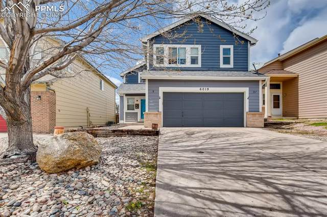 6019 Desoto Drive, Colorado Springs, CO 80922 (#2696737) :: Finch & Gable Real Estate Co.