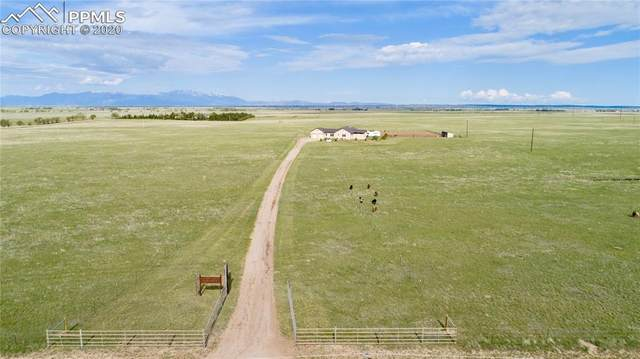 9690 N Log Road, Calhan, CO 80808 (#2698623) :: Action Team Realty