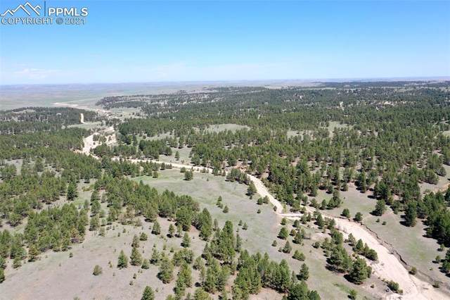 0000 Onyx Trail, Deer Trail, CO 80105 (#2699834) :: Fisk Team, eXp Realty