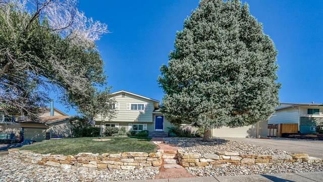 2420 Telemark Court, Colorado Springs, CO 80918 (#2706770) :: Simental Homes | The Cutting Edge, Realtors