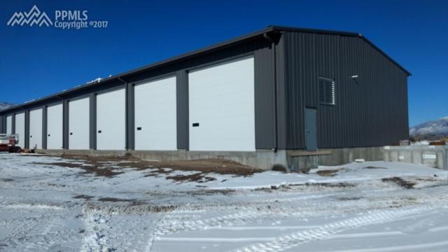 481 Gregg Drive, Buena Vista, CO 81211 (#2707562) :: 8z Real Estate