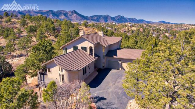 7030 Switchback Trail, Colorado Springs, CO 80919 (#2709535) :: Colorado Home Finder Realty