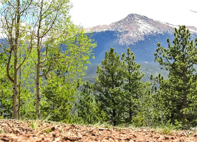 704 Woodrock Way, Divide, CO 80814 (#2710858) :: 8z Real Estate