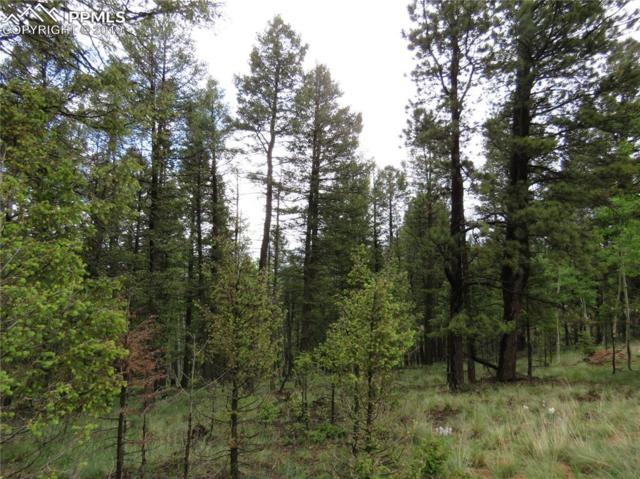 1751 N Mountain Estates Road, Florissant, CO 80816 (#2715567) :: Action Team Realty