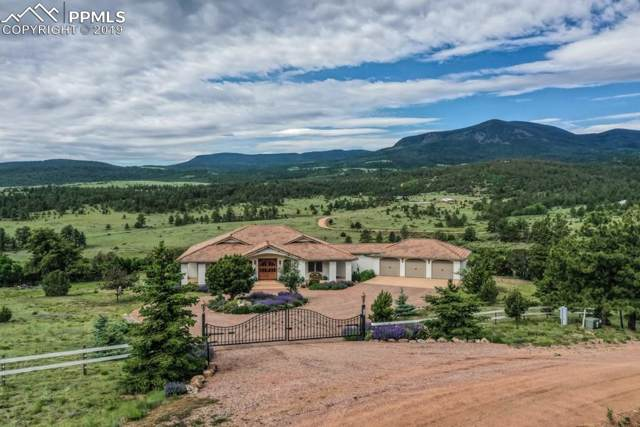 120 Rosebush Road, Canon City, CO 81212 (#2718291) :: Colorado Home Finder Realty