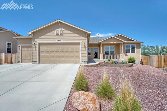 7684 Wrangler Ridge Drive, Colorado Springs, CO 80923 (#2718440) :: Fisk Team, RE/MAX Properties, Inc.