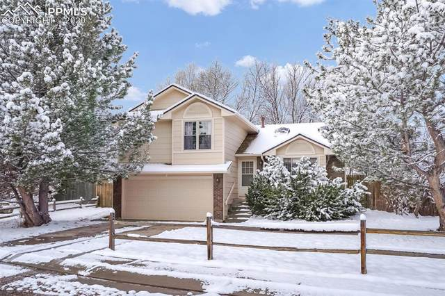 140 Pointer Place, Colorado Springs, CO 80911 (#2726460) :: The Treasure Davis Team
