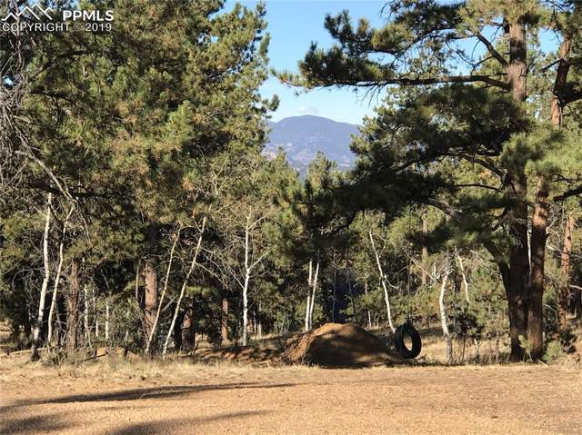 531 Obsidian Drive, Florissant, CO 80816 (#2727182) :: Action Team Realty