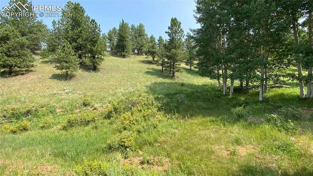 1699 Monarch Drive, Cripple Creek, CO 80813 (#2728419) :: Tommy Daly Home Team