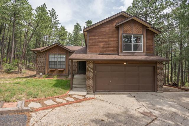 15095 Pleasant View Drive, Colorado Springs, CO 80921 (#2728890) :: 8z Real Estate