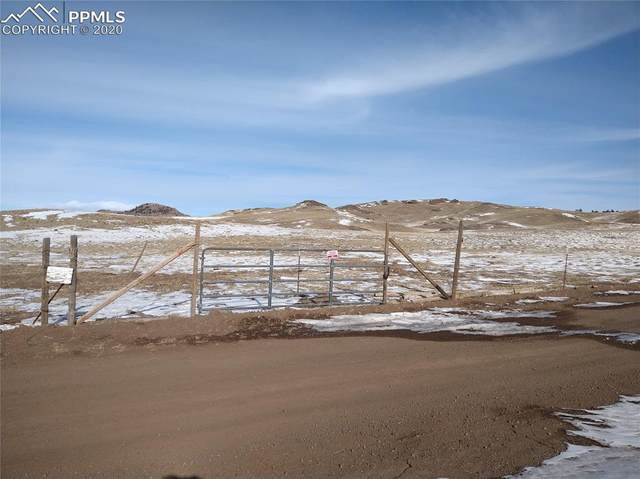 715 Ahlers Lane, Hartsel, CO 80449 (#2731277) :: Finch & Gable Real Estate Co.