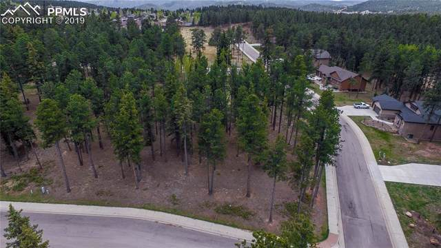 605 Chipmunk Drive, Woodland Park, CO 80863 (#2734937) :: Perfect Properties powered by HomeTrackR