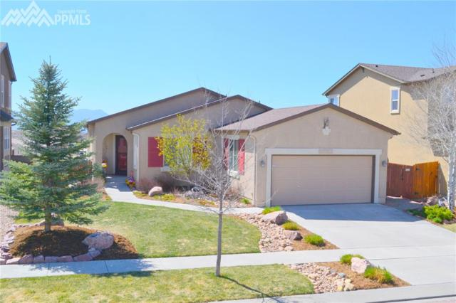 8048 Mount Huron Trail, Colorado Springs, CO 80924 (#2743336) :: Fisk Team, RE/MAX Properties, Inc.