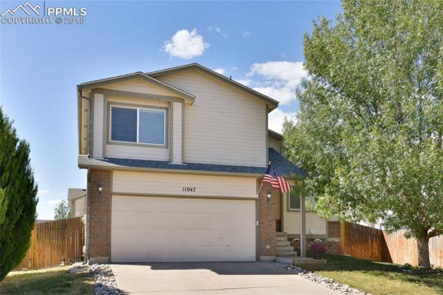 11047 Berry Farm Road, Fountain, CO 80817 (#2754749) :: The Peak Properties Group