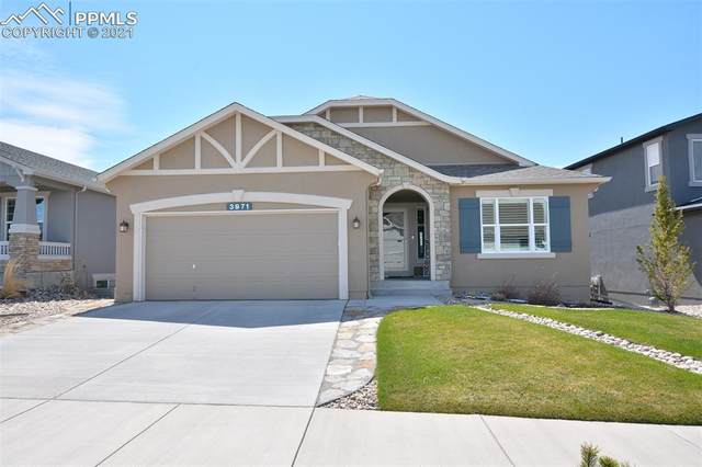 3971 Horse Gulch Loop, Colorado Springs, CO 80924 (#2755021) :: The Daniels Team