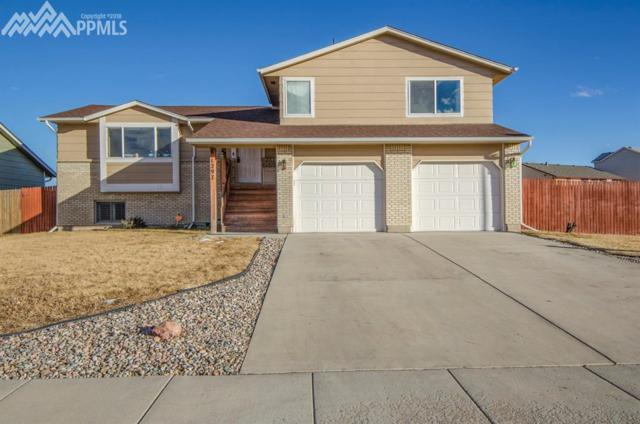 1297 Marsh Hawk Drive, Colorado Springs, CO 80911 (#2756582) :: 8z Real Estate