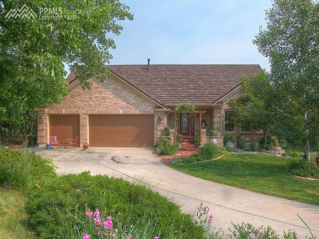 240 Childe Drive, Colorado Springs, CO 80906 (#2757152) :: Action Team Realty