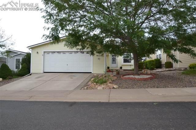 4024 Gray Fox Heights, Colorado Springs, CO 80922 (#2759656) :: Colorado Home Finder Realty