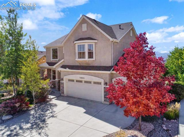 13832 Honey Run Way, Colorado Springs, CO 80921 (#2760548) :: The Hunstiger Team