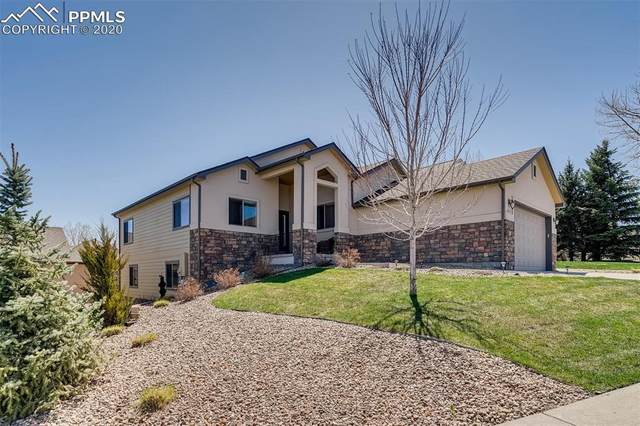 847 Stafford Circle, Castle Rock, CO 80104 (#2761814) :: Tommy Daly Home Team