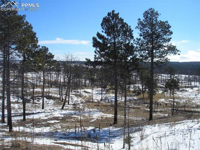 12975 Holmes Road, Colorado Springs, CO 80908 (#2762195) :: Jason Daniels & Associates at RE/MAX Millennium