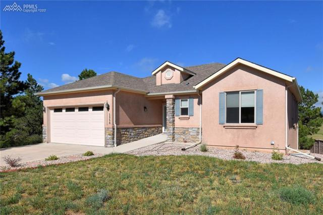 1558 Piney Hill Point, Monument, CO 80132 (#2766508) :: 8z Real Estate