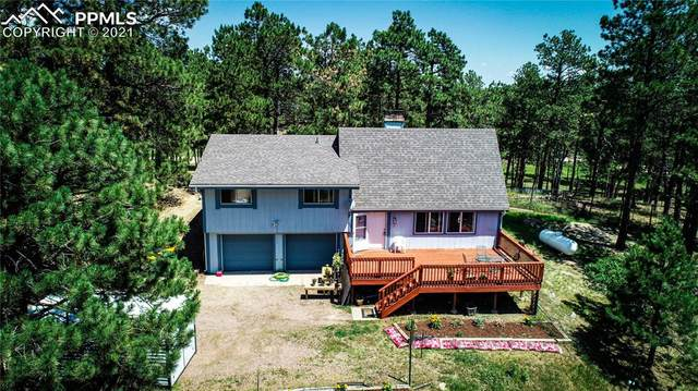 14355 Timber Grove Lane, Elbert, CO 80106 (#2774588) :: Tommy Daly Home Team