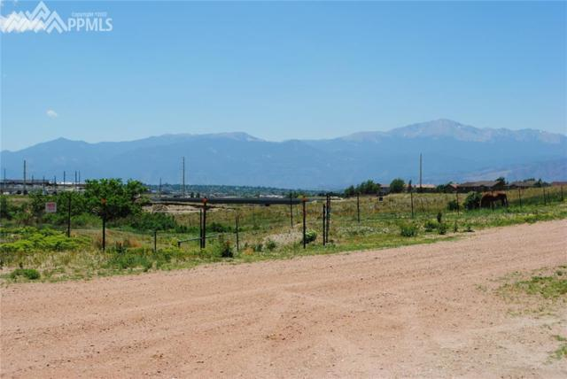 6040 Cowpoke Road, Colorado Springs, CO 80924 (#2775669) :: Action Team Realty