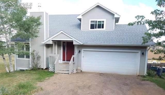 317 Columbine Road, Palmer Lake, CO 80133 (#2777023) :: Colorado Home Finder Realty