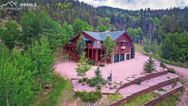 3115 Highway 9 Highway, Guffey, CO 80820 (#2777346) :: The Hunstiger Team