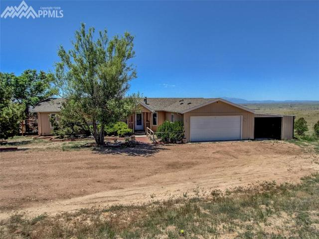 10460 Soap Weed Road, Calhan, CO 80808 (#2782827) :: Colorado Home Finder Realty