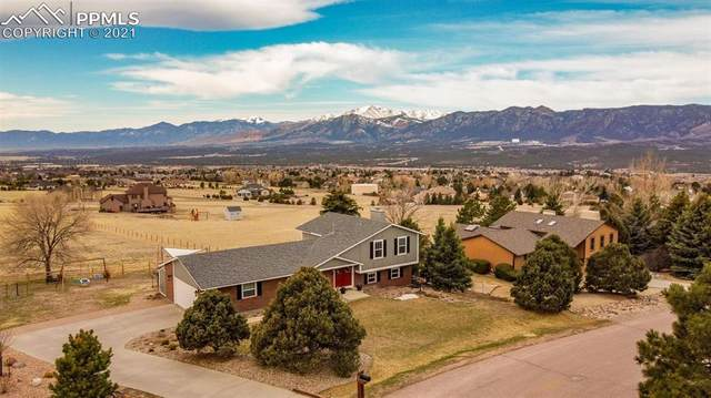 685 Wuthering Heights Drive, Colorado Springs, CO 80921 (#2785579) :: Tommy Daly Home Team