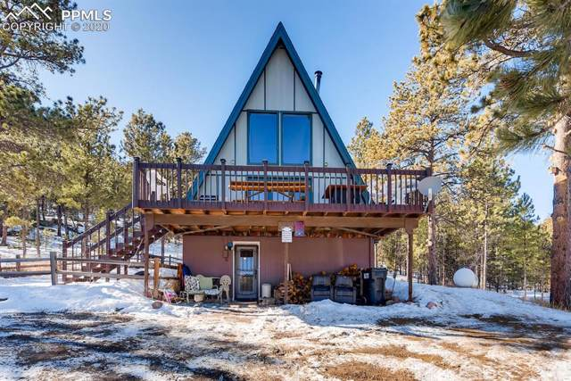5463 High Park Road, Florissant, CO 80816 (#2785683) :: The Daniels Team