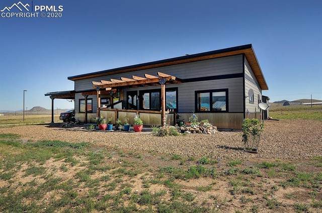 109 Yucca Lane, Westcliffe, CO 81252 (#2786397) :: The Dixon Group