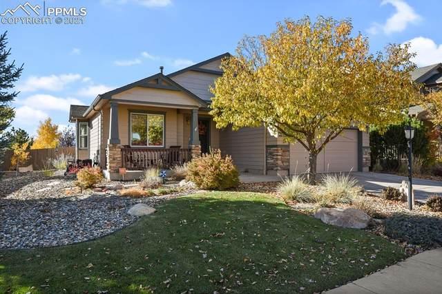 4226 Purple Plum Way, Colorado Springs, CO 80920 (#2788421) :: Relevate | Denver