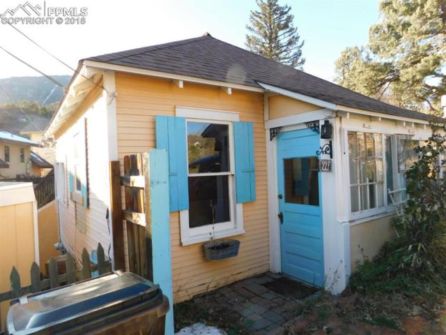 227 Iron Road, Manitou Springs, CO 80829 (#2788791) :: Action Team Realty