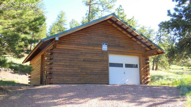 102 Old Kathleen Trail, Guffey, CO 80820 (#2791984) :: 8z Real Estate
