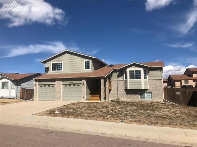 8456 Lundeen Place, Colorado Springs, CO 80925 (#2795653) :: The Treasure Davis Team